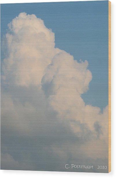 Summer Time Cloud Wood Print by Carolyn Postelwait