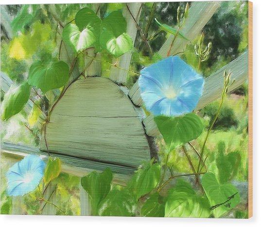 Summer Usa Wood Print by Eddie Durrett