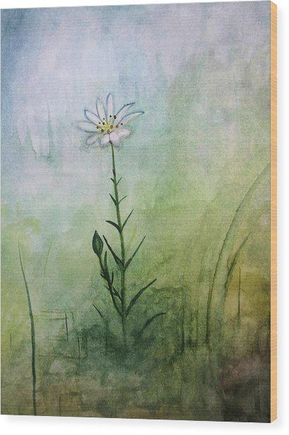 Summer Wildflower Wood Print