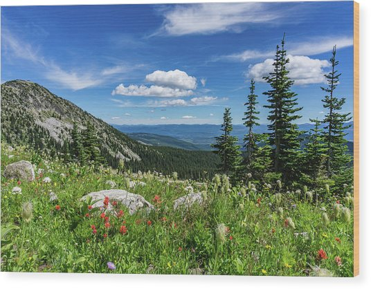 Summer Wildflowers On Big White Wood Print