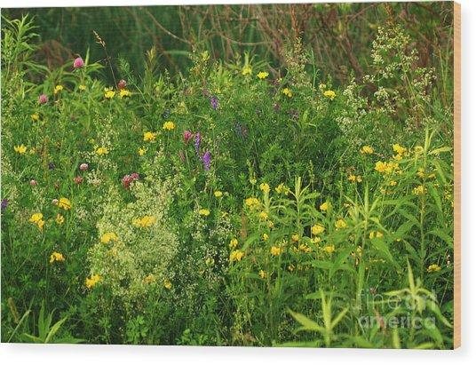 Summer Wildflowers Wood Print