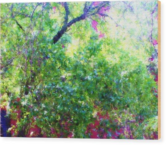 Summer Window Wood Print