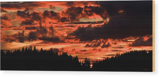 Summer's Crimson Fire Wood Print