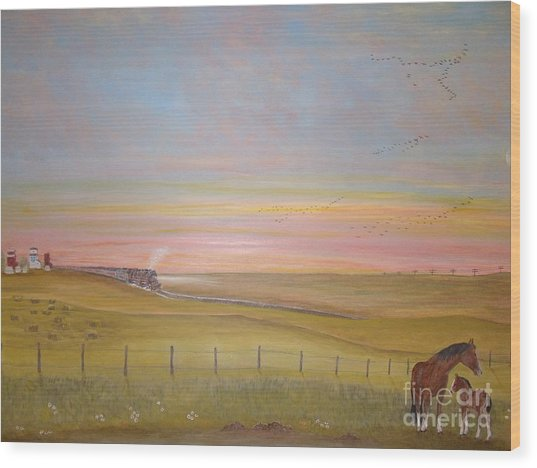 Summer's Prairie Sunset Wood Print