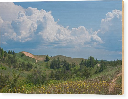 Summertime In The Grand Sable Dunes Wood Print