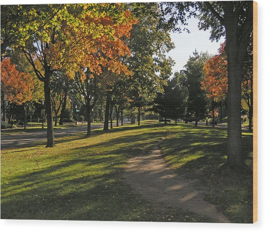 Summit Avenue In The Fall Wood Print by Janis Beauchamp
