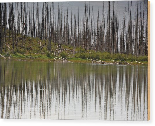 Summit Lake Wood Print