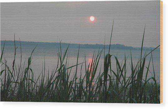Sun Drop Wood Print