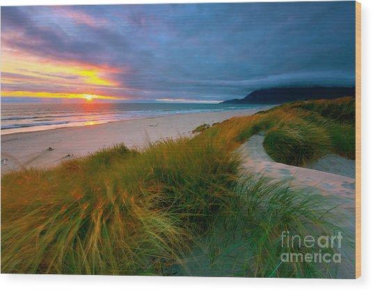 Sun Dunes Wood Print