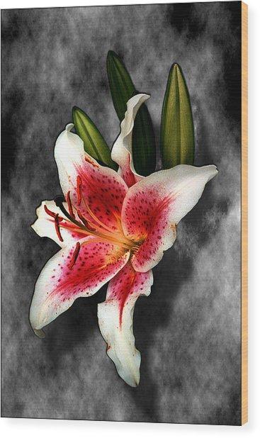 Sun Gazer Lily Wood Print