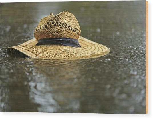 Sun Hat In The Rain Wood Print