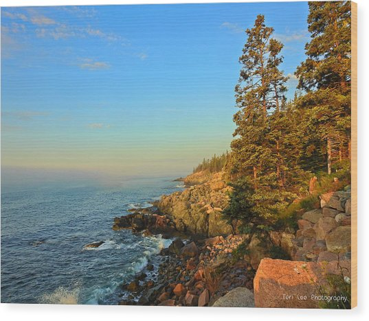 Sun-kissed Coast Wood Print