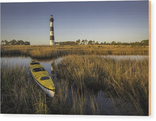 Sun Kissed  Wood Print by Michael Donahue