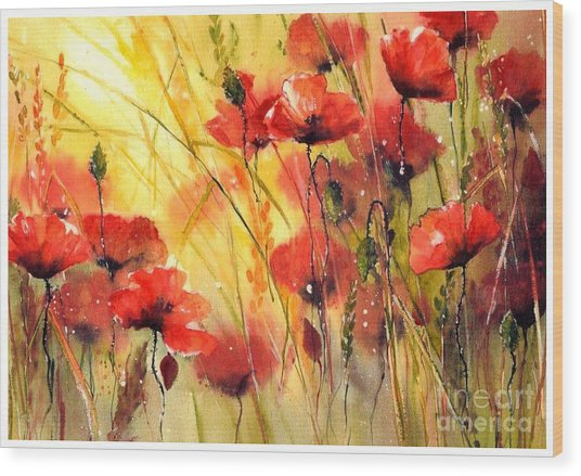 Sun Kissed Poppies Wood Print