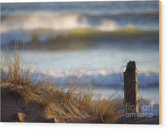 Sun Kissed Waves Wood Print