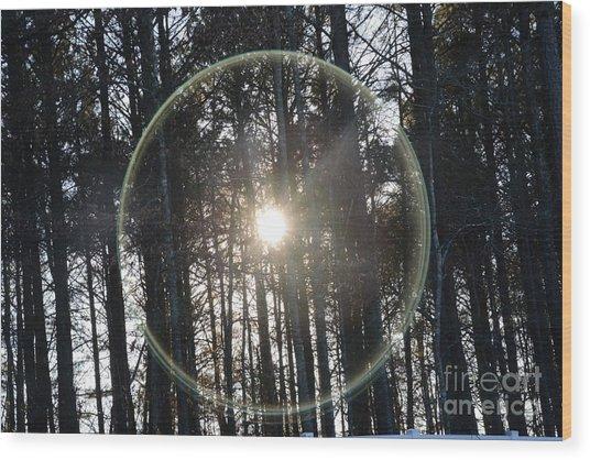 Sun Or Lens Flare In Between The Woods -georgia Wood Print