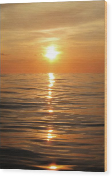 Sun Setting Over Calm Waters Wood Print