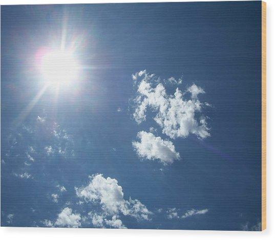 Sun Shine Wood Print by Trenton Heckman
