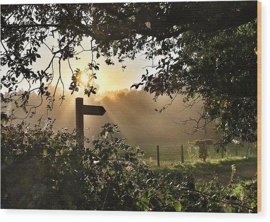 Sun Sign Wood Print