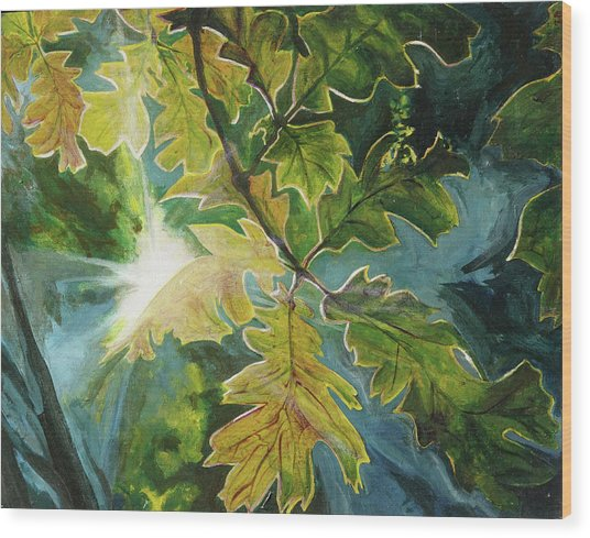 Sun Through Oak Leaves Wood Print
