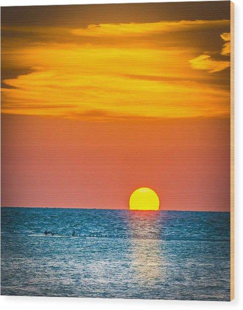 Sunbathing Wood Print