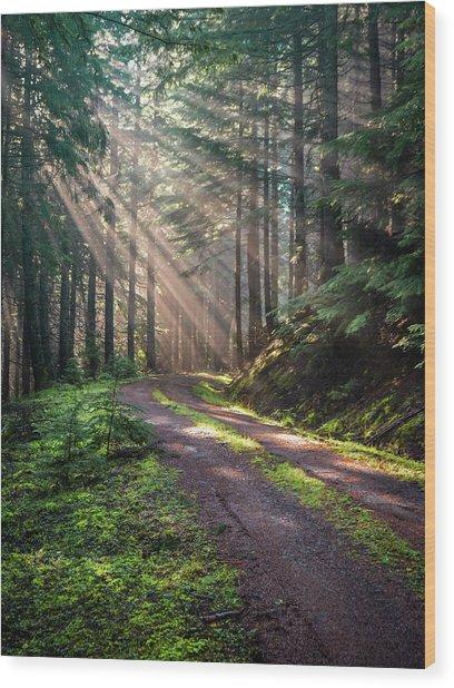 Sunbeam In Trees Portrait Wood Print
