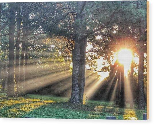 Sunbeams V Wood Print