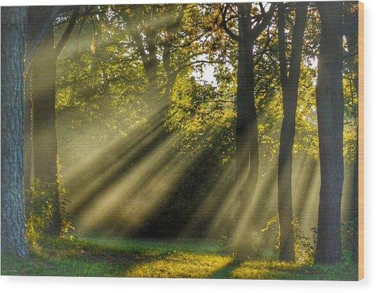 Sunbeams Vii Wood Print