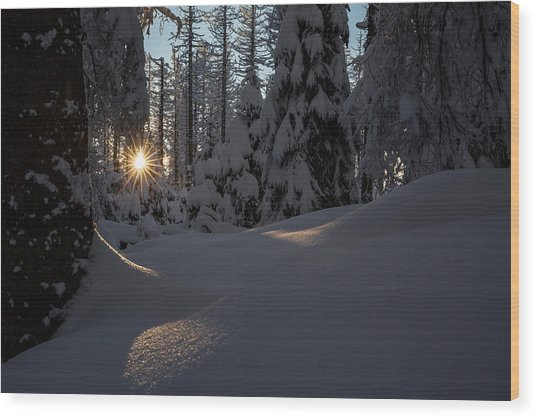 Sunburst In Winter Fairytale Forest Harz Wood Print