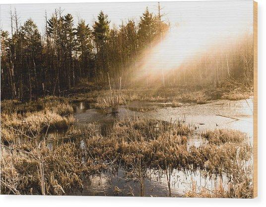 Sunburst Wood Print