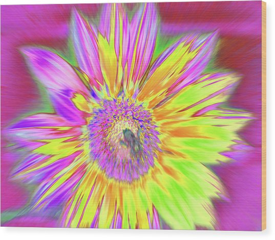 Sunbuzzy Wood Print