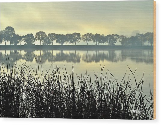 Fog At Sunrise Wood Print