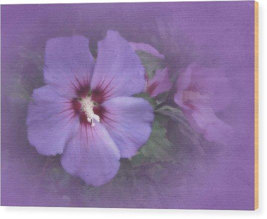 Sunday Hibiscus Wood Print