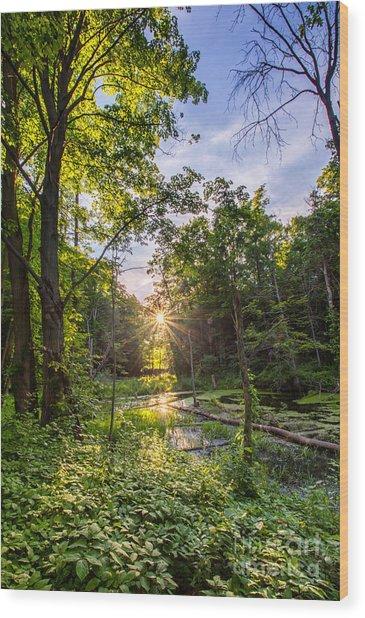 Sundown At Creekside Wood Print