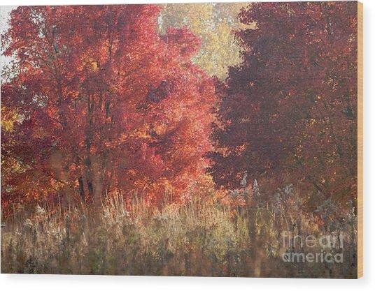 Sundown Wood Print by Hideaki Sakurai