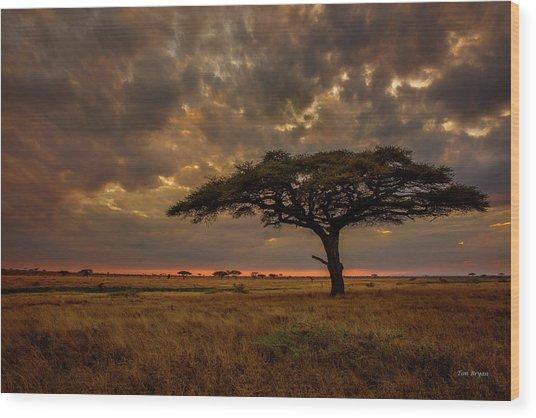 Sundown, Namiri Plains Wood Print
