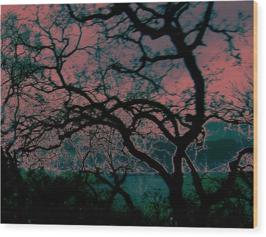 Sundown Wood Print by Tim Tanis