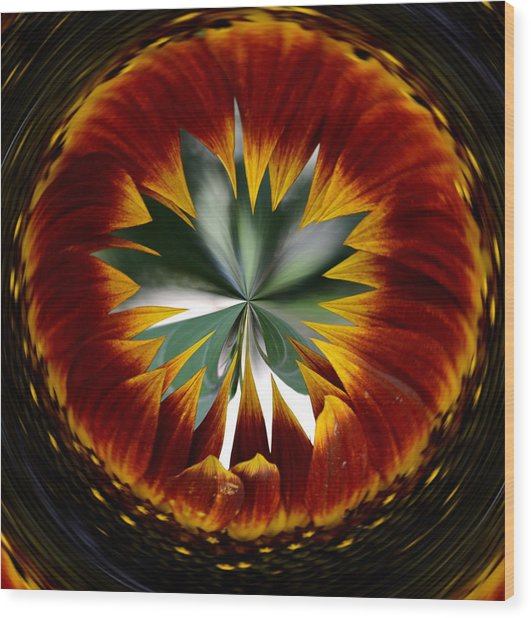 Sunflower Circle Wood Print