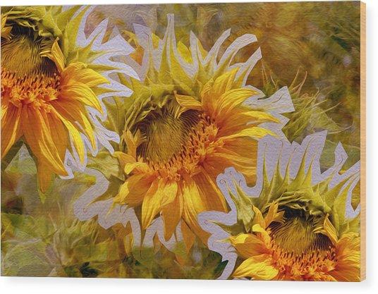 Sunflower Delight Wood Print