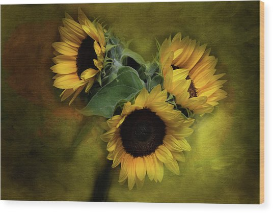 Sunflower Family Wood Print