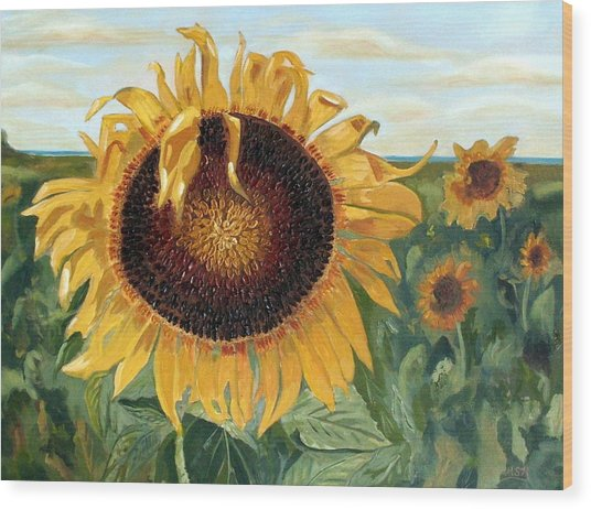 Sunflower Fields Forever  Wood Print by Maria Soto Robbins