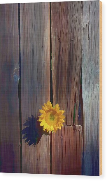 Sunflower In Barn Wood Wood Print