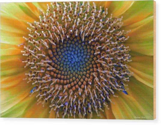 Sunflower Jewels Wood Print