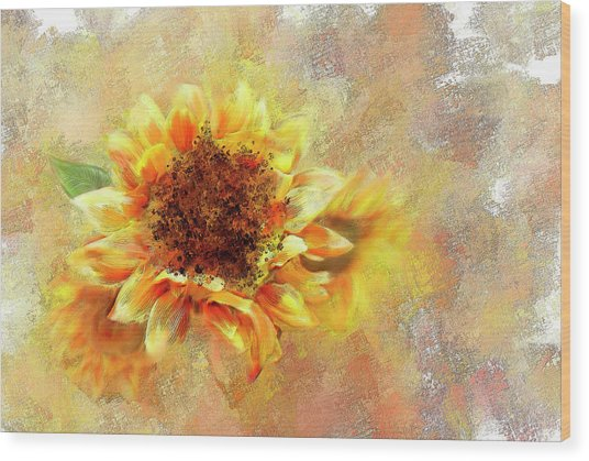 Sunflower On Fire Wood Print