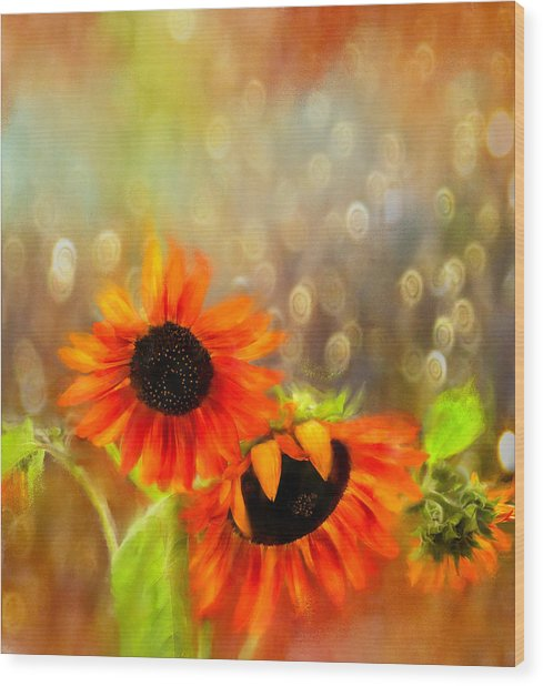 Sunflower Rain Wood Print