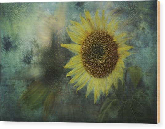 Sunflower Sea Wood Print