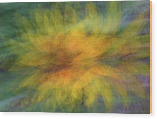 Wood Print featuring the photograph Sunflower Shimmy by Deborah Hughes