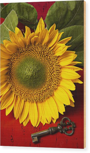 Sunflower With Old Key Wood Print