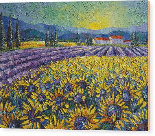 Sunflowers And Lavender Field - The Colors Of Provence Modern Impressionist Palette Knife Painting Wood Print