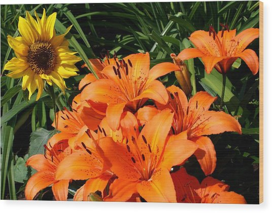 Sunflowers And Lillies Wood Print